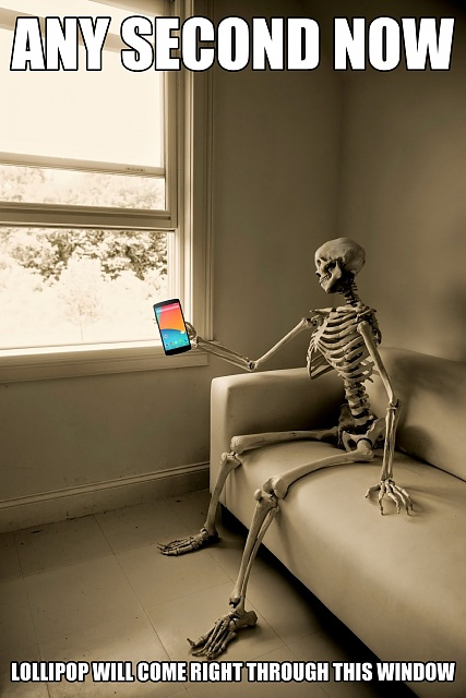 Android 6.0 OTA Rollout for Nexus Devices-skeleton-waiting1.jpg