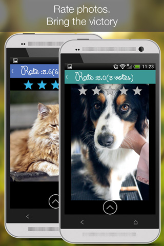 [FREE]Cat Vs Dog - pet photos-phone_4.jpg