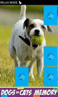 [FREE GAME APP] Action Memory games with dogs and cats-device9.jpg