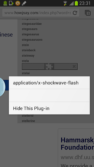 How to install shockwave flash?-2013-02-02-23-31-32.png