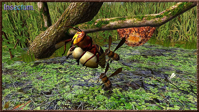 Insectum-wild insect world (Free)-scr-4-.jpg