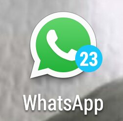Muting WhatsApp notification doesn't fully works-uploadfromtaptalk1441784054054.jpg