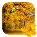 [FREE][LWP] Beautiful Autumn-0.png