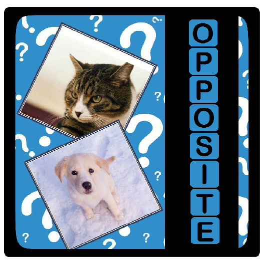 [GAME] [FREE] - Guess The Opposite!-icon_final-2.png