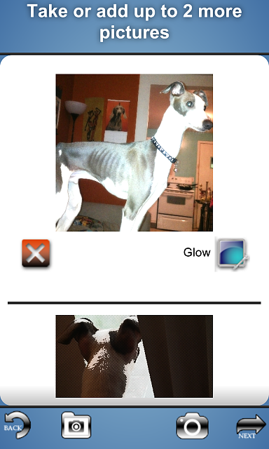 blogWalker for tumblr updated with photo posting and photo filters-img_00000040.png