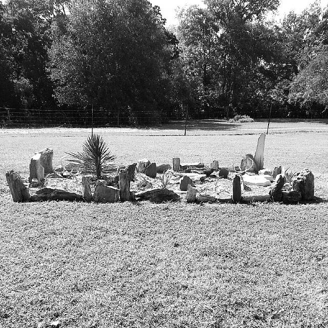 Weekly photo contest -- black and white-outlaw-rock-garden.jpg