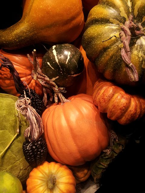 Weekly photo contest -- color-gourds.jpg