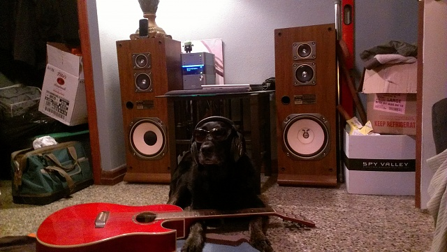 Weekly photo contest -- rocking out!-imag0700.jpg