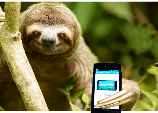 'Spring into TEGRA' Contest: Win a Tegra-powered HTC One X+!-captivate-sloth.jpg