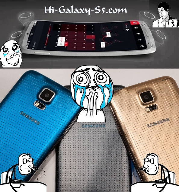 Samsung Galaxy S5 Concept vs Reality-want-vs-reality.jpg
