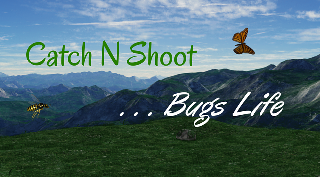 Catch  N Shoot ... Bugs Life [GAME] [FREE]-windows_846x468.png
