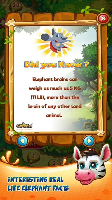 Jungle Rush - Adventure Puzzle-4.jpg