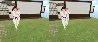 Anime fighters vr! Street fighter in vr ?-capture-5.jpg