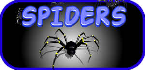 [Free Game] Spiders!-spiders-android-game.png