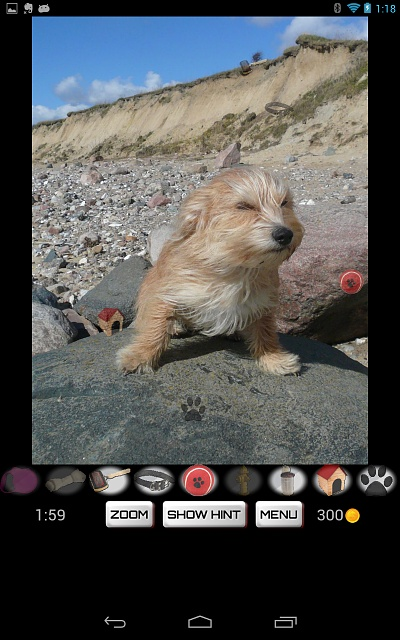 Hidden Object: Dogs - Free game for dog lovers, now on Google Play-screenshot_2013-07-02-01-18-34.jpg