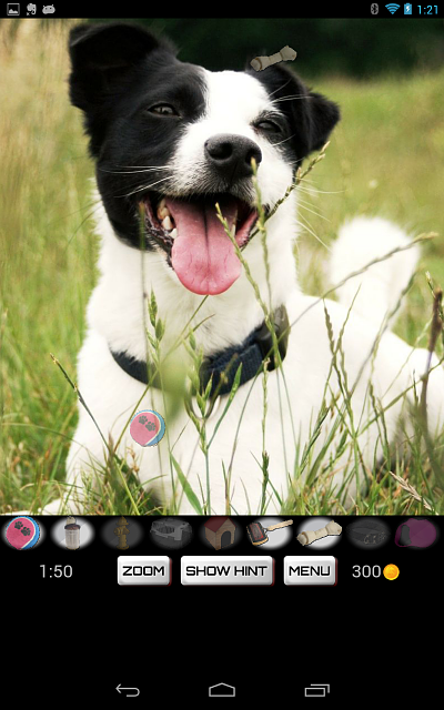 Hidden Object: Dogs - Free game for dog lovers, now on Google Play-screenshot_2013-07-02-01-21-32.png