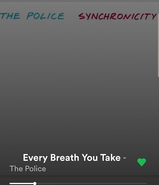 What are you listening to?-screenshot_20190620-061028_spotify.jpg