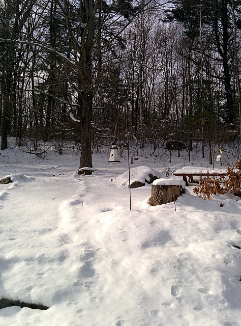 How does the camera (post update) compare against the LG G2?-2014-01-20-12.38.33.jpg