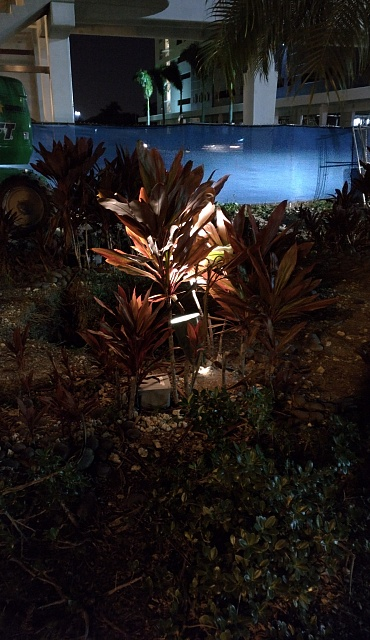 Nexus 6: Camera Pictures!  Lets see them.-img_20141117_182848.jpg