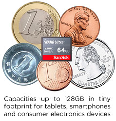 MicroSD to Micro USB Adapter for Nexus devices (or any rooted Android device)-inand-coins.jpg