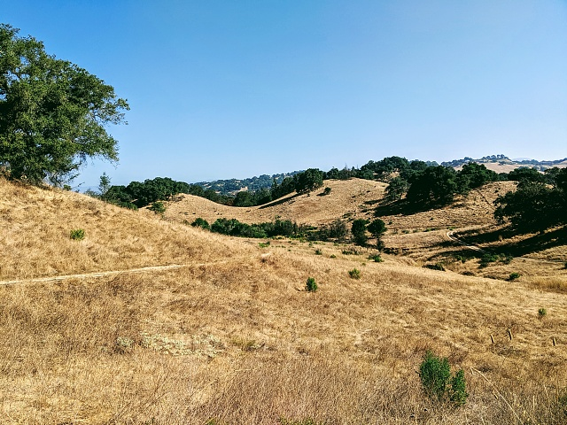 Google Pixel 2 Camera Shots! Show Us Your Pictures-img_20190817_094002.jpg