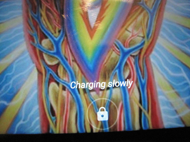 Will a Samsung Adaptive Fast Charger work with an LG/Google Nexus 5x?-34941739563_bf7885979b_z.jpg