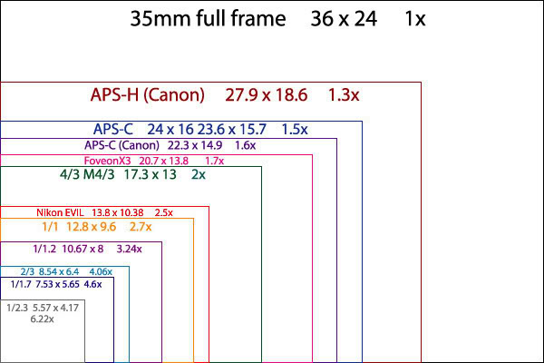 6P Camera - Not THAT Impressed?-sensor-size-digital-cameras.jpg