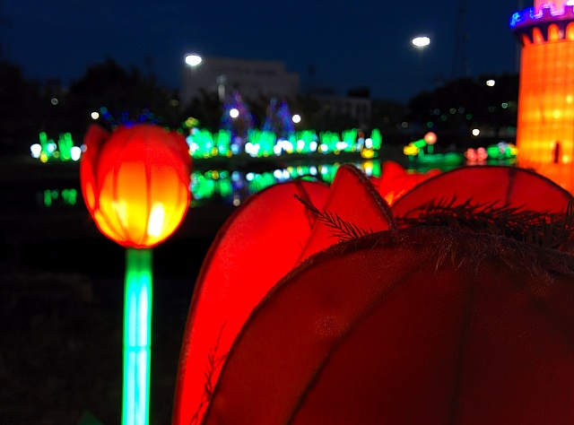 Weekly Photo Contest: Lights-img_20131227_175248.jpg