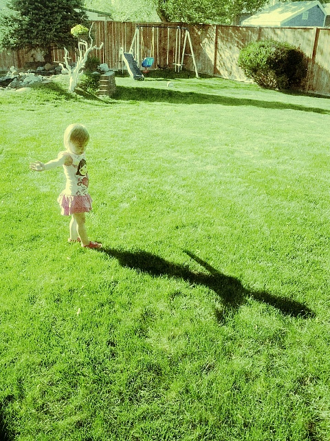 Weekly Photo Contest: Light and Shadows-img_20120513_174524_1.jpg