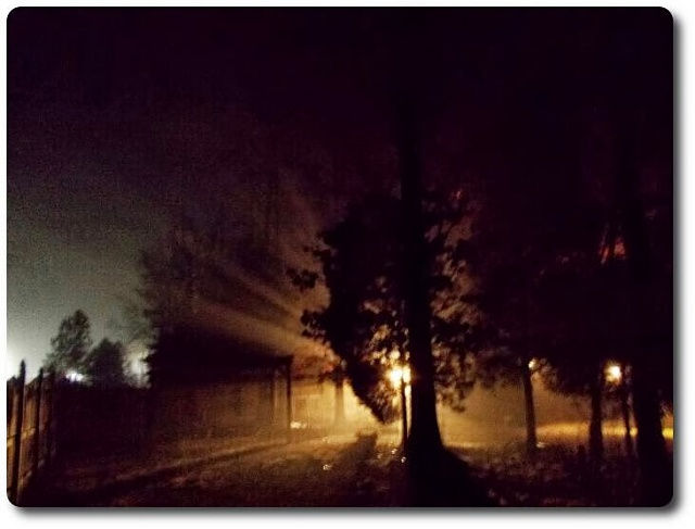 Weekly Photo Contest: Light and Shadows-superphoto_140110140131.jpg