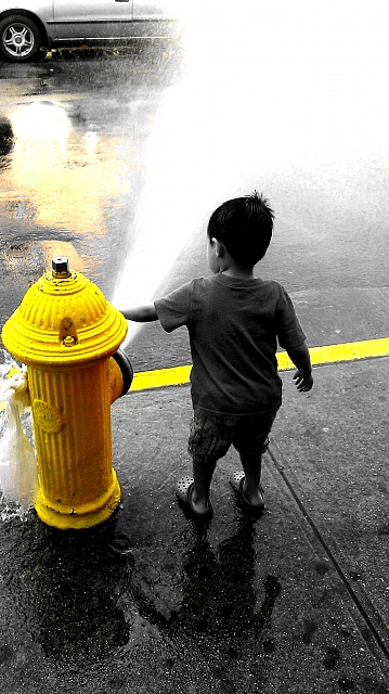 Weekly Photo Contest: Yellow-picsart_1398297027753.jpg