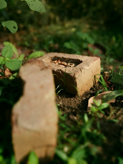 Weekly Photo Contest: Bricks-img_20140421_081941.jpg