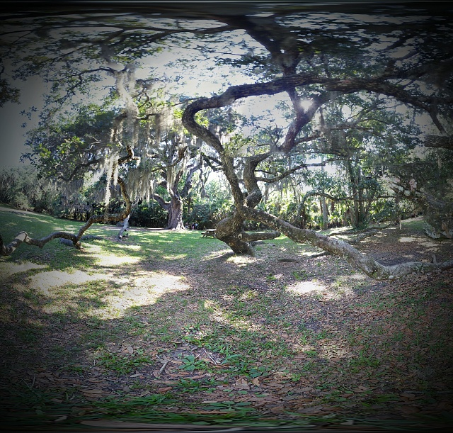 Weekly Photo Contest: Parks-pano_20140621_101518-picsay.jpg