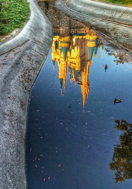 Weekly Photo Contest: Reflection-image_2.jpg
