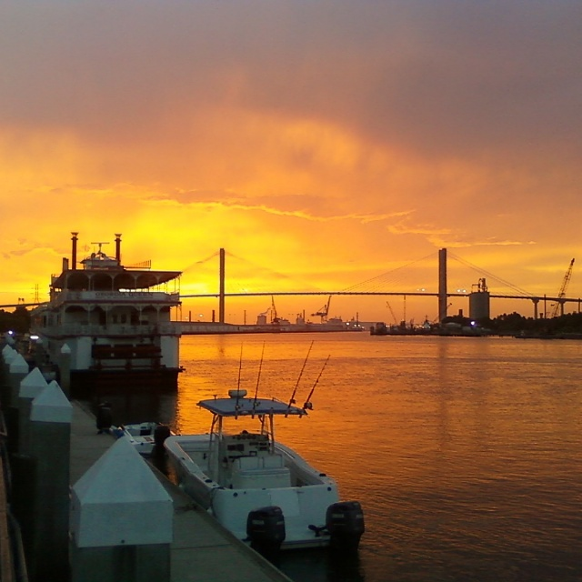Weekly Photo Contest: Bridges-savannah-2010_2.jpg