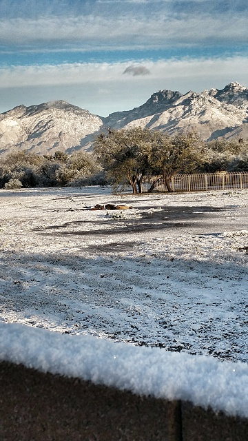 Android Central Photo Contest: Cold-snow-tucson-jan-2015.jpg