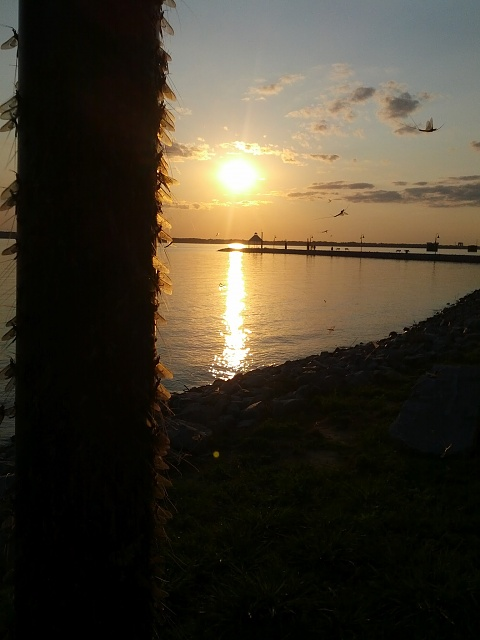 Weekly Photo Contest: Sunset-img_20120817_190637.jpg