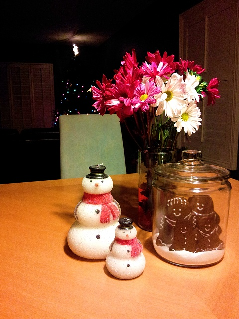 Holiday Photo Contest: Android mini collectible giveaway!-20131214_192203.jpg