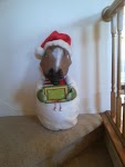 Holiday Photo Contest: Android mini collectible giveaway!-img_20131207_160759785.jpg