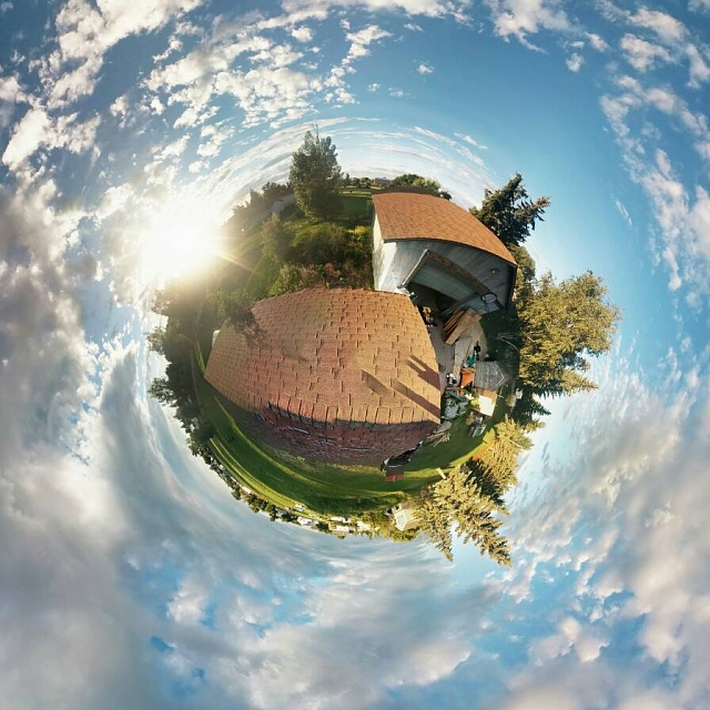 Tiny plant photosphere-8631.jpg