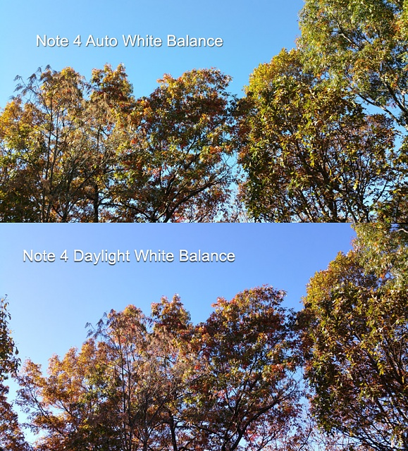 Note 4 White Balance Comparison - AWB vs. Daylight-note-4-white-balance-comparison.jpg