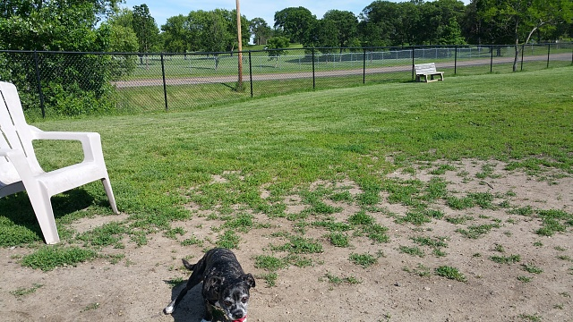 Note 4 Camera Pictures!  Got one? We would love to see it.-20150612_164511_014.jpg