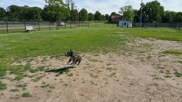 Note 4 Camera Pictures!  Got one? We would love to see it.-20150612_164520_012.jpg