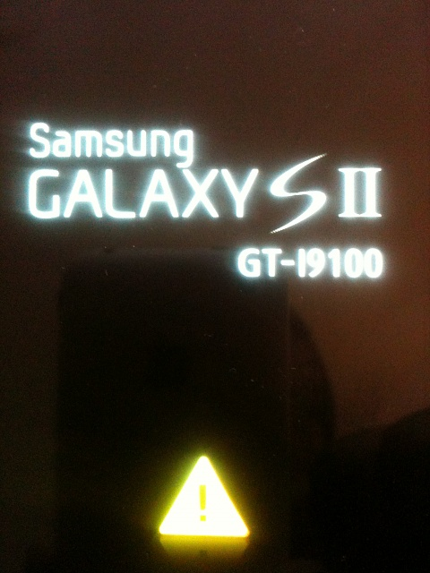 HELP!  Rooted phone unuseable, stuck in Samsung Galaxy SII screen  when rebooting.-img_pic01.jpg