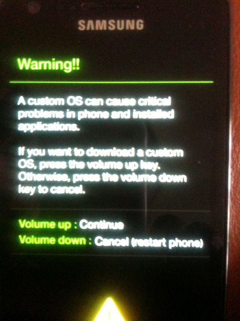 HELP!  Rooted phone unuseable, stuck in Samsung Galaxy SII screen  when rebooting.-img_pic02.jpg