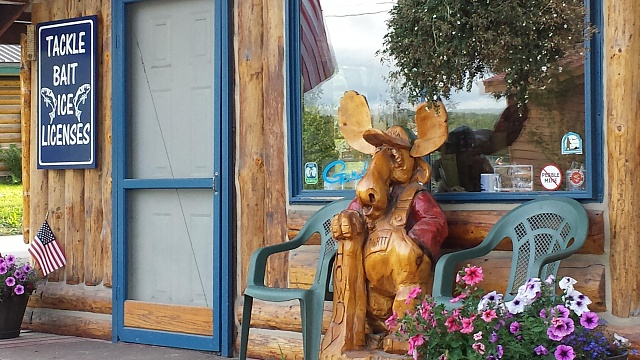 [Galaxy S4] Camera Pictures: Let's see what you got!-talkeetna-moose.jpg