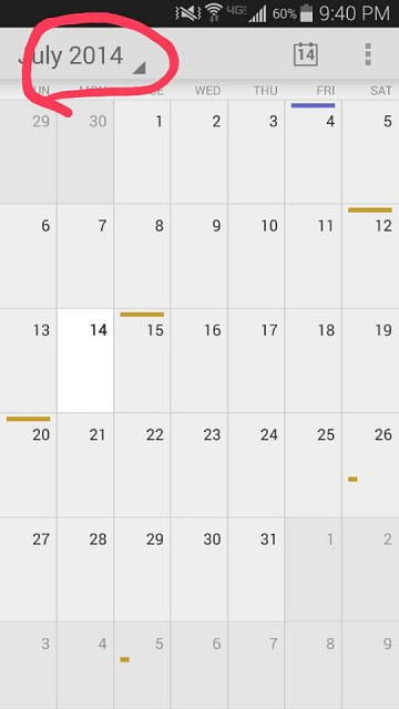 Google Calendar views??-2014-07-14-21.41.14.jpg