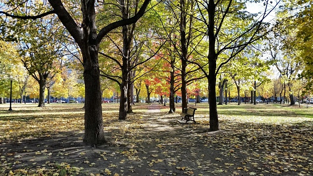 Share your Galaxy S5 camera photos, videos, and thoughts!-20141030_113201.jpg