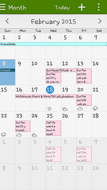 Google calendar-screenshot_2015-02-18-12-06-09.jpg
