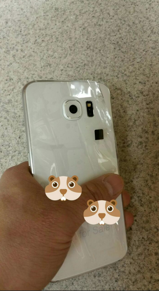 We MAYY have our first look at the real deal GS6! Actual pics of the device itself!-screen-shot-2015-02-25-4.22.44-pm.png